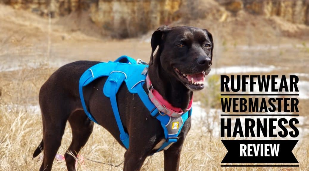 Ruffwear Webmaster Harness Review